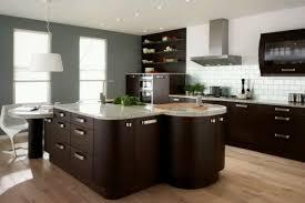 Kitchen Cabinets Organization Ideas Posidriving New Home Kitchen Designs Tags Kitchen Cupboard Ideas
