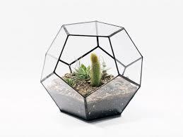 terrariums here u0027s a small glass cactus terrari