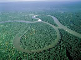 Amazon River On World Map by
