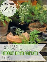 Potted Herb Garden Ideas 25 Fantastic Indoor Herb Garden Ideas Tipsaholic