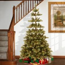 national tree co flocked trees you ll wayfair