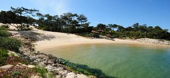 chambre d h e cap ferret front rental selection of charming houses and