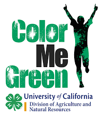 Color Green Color Me Green 5k Run Uc 4 H Youth Development Program