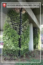 new way to be green vertical wall gardens