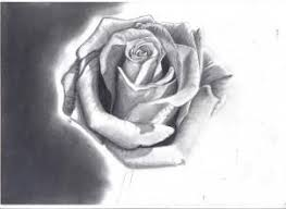 how to draw a rose in pencil draw a realistic rose step by step
