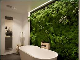 wall designs 30 breathtaking living wall designs for creating your own vertical