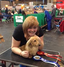 crufts australian shepherd 2014 48 best crufts champions images on pinterest afghans classic