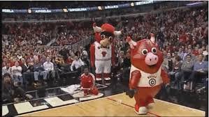 Benny Bull Halloween Costume Chicago Bulls Cheerleader Surprised Proposal Middle