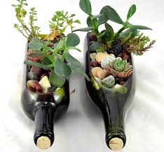 amazon com diy wine bottle succulent planter handmade