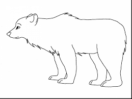 terrific brown bear coloring bear coloring pages