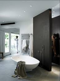 Open Shower Bathroom Best 25 Open Showers Ideas On Pinterest Open Style Showers For