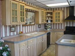 Taupe Cabinets Kitchen Contemporary Design Taupe Kitchen Cabinet Decoration Idea