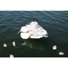 biodegradable urn looking for new ideas for biodegradable urns ashes on the sea