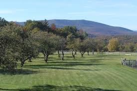 historic nh homes for sale upper valley historic properties