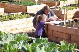 gardening as a kid indicates that you u0027ll eat fruits and veggies as