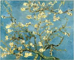 cherry blossom tree facts blossoming almond tree almond blossom by van gogh van gogh gallery