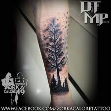black forest tattoo on forearm by zorka calore