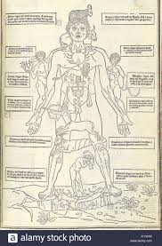 zodiac man from illustrating how the human body relates to the