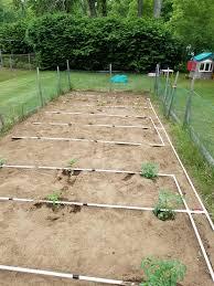 pvc irrigation system fed by a 55 gallon rain barrel gardening