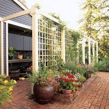 Backyard Privacy Screens Trellis Trellis Design Ideas Trellises With Fences Or Screens Diy
