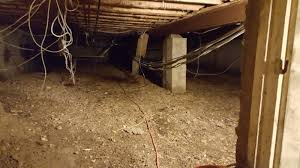 removal from a crawl space