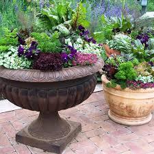 mountain gardening a colorful patio container garden
