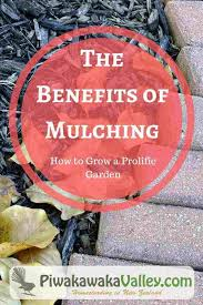 benefits of mulching how to grow a prolific garden how to mulch