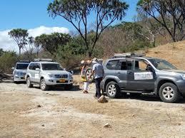 nissan safari off road self drive off road safari u2013 sima safari