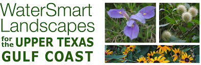 texas native plants landscaping watersmart landscapes for the upper texas gulf coast teaching