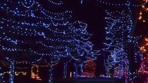 Christmas Lights For Cars Christmas Light Displays Near Me Best In West Palm Jupiter