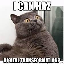 I Can Haz Meme Generator - i can haz digital transformation conspiracy cat meme generator