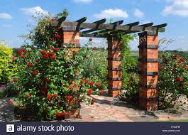 garden statue brick pergola with climbing roses stock photo