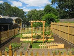 backyard vegetable garden house ideas and kitchen with white fence