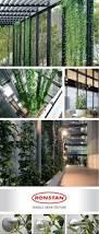 36 best sisteme pentru plante cataratoare images on pinterest