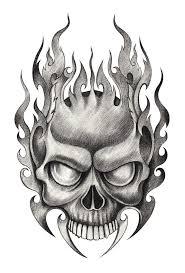 skull stock illustration illustration of 67768222