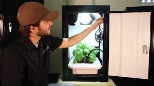 hydroponic grow box works best growing kit by supercloset youtube