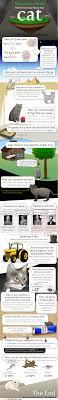 Cat Facts Meme - cat facts cat humor cats funny lolcats humour meme cute