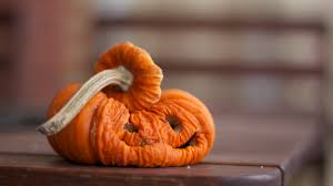24 halloween treat fails that u0027re horrifyingly hilarious pinterest