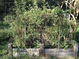 raised garden bed summer version 1 u2013 gentleman farmer