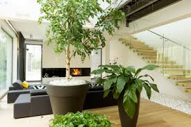 Interior Garden Services Indoor Garden U0026 Plant Care Services In Dallas Ft Worth Foliage