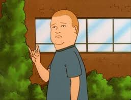 Bobby Hill Meme - bobby hill brain waves pinterest bobby hill and humor
