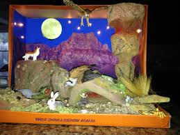 shoebox desert diorama made for 3rd grade project animal