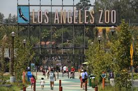best parent gathering places in los angeles cbs los angeles