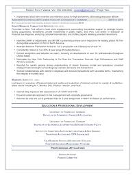 It Executive Resume Samples by The Top 4 Executive Resume Examples Written By A Professional