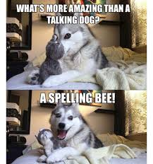 Pun Dog Meme - can we make this guy bad pun dog pun dog bad pun dog and worst