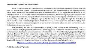 Lab Bench Photosynthesis Dpip Dry Lab Rewrite Doc Google Docs