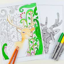 Woodland Animals Coloring Pages For Grown Ups Kids Red Ted Woodland Animals Coloring Pages