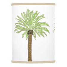 palm tree drawing gifts on zazzle