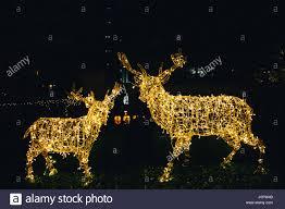 lights reindeer deer illuminated decorations in a garden
