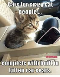 Crazy Cat Memes - cars for crazy cat people the best cat dage complete with built in